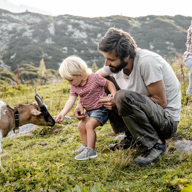 Urlaub mit Kind in Österreich